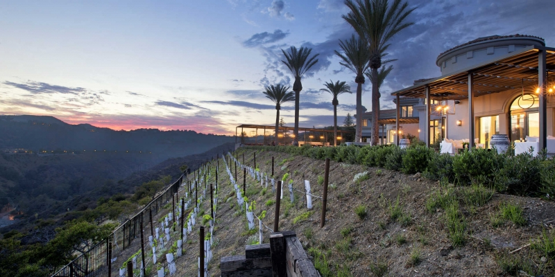 This Calls for a Toast: 7 Homes Made for the Wine-Lover