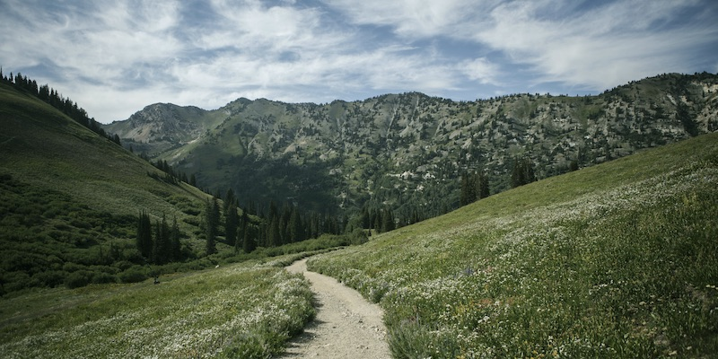 Incredible Trails to Explore within Close Reach of Park City