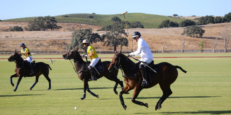 Mandarina - Stick & Ball Polo Team Riding High After Season-End Triumph