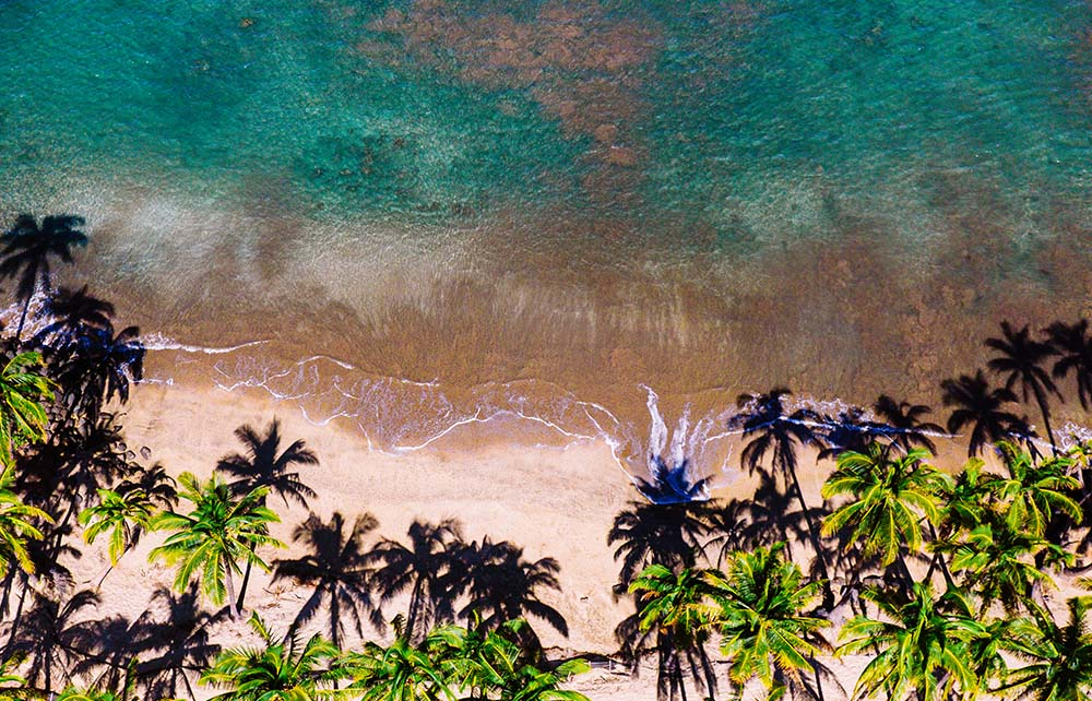 The Agency Launches First Hawaiian Franchise in Maui