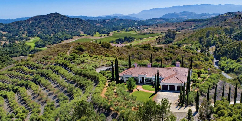 Drizzled in Tranquility - An Olive Oil Farm on Six Blissful Acres Hits the Market in Temecula
